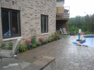 Plantings to soften the parging on the house